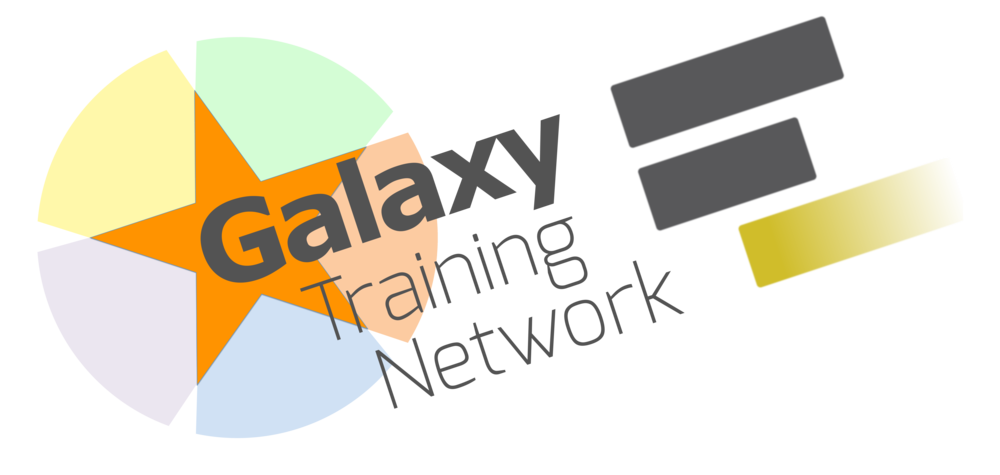 Galaxy Training Network Logo